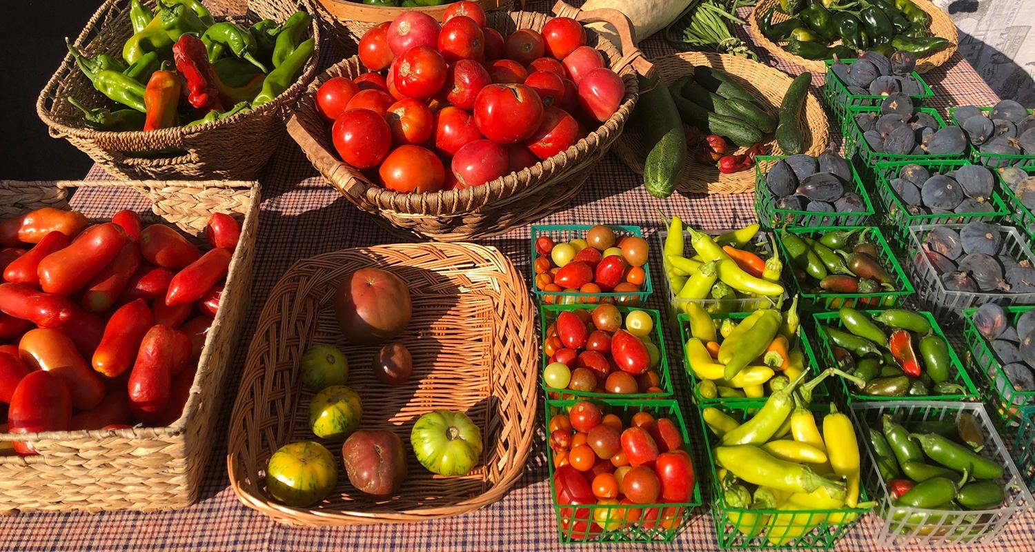 Check out our Farmer's Market