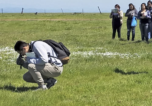 Student Clubs Venture to Vernal Pools and Grasslands Reserve