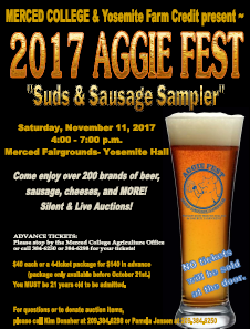 Aggiefest Flyer